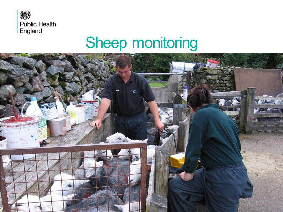 Sheep monitoring 7Protective actions in acute chemical incidents: shelter or evacuate