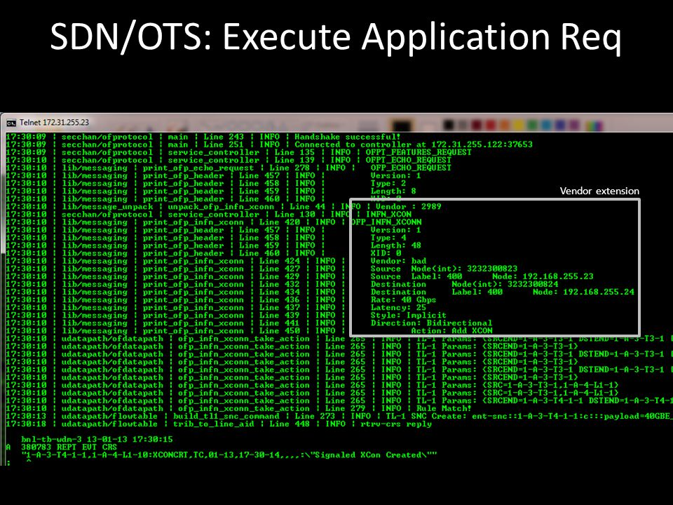 SDN/OTS: Execute Application Req Vendor extension