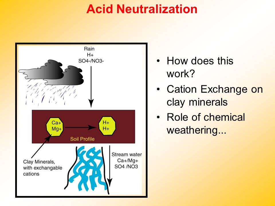 Acid Neutralization How does this work? Cation Exchange on clay minerals Role of chemical weathering...