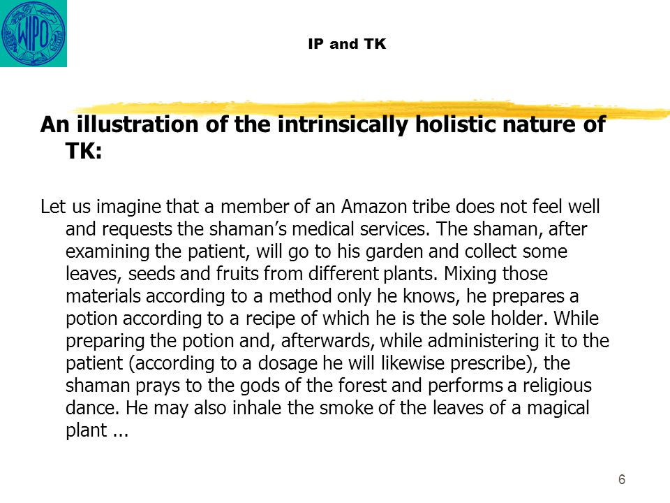 6 IP and TK An illustration of the intrinsically holistic nature of TK: Let us imagine that a member of an Amazon tribe does not feel well and request