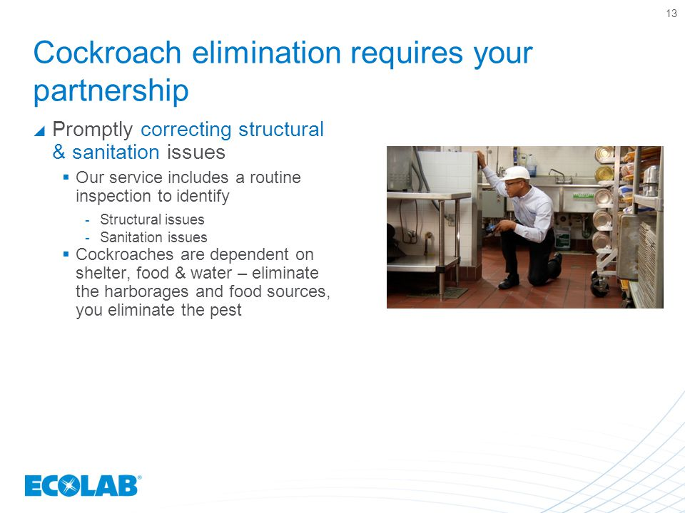 Cockroach elimination requires your partnership  Promptly correcting structural & sanitation issues  Our service includes a routine inspection to id