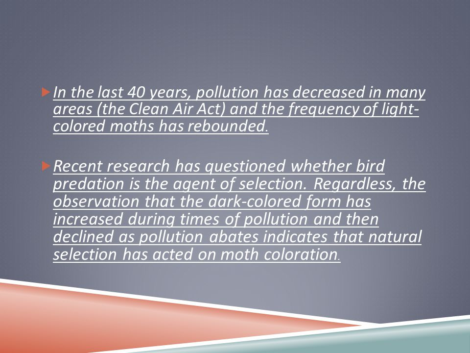  In the last 40 years, pollution has decreased in many areas (the Clean Air Act) and the frequency of light- colored moths has rebounded.  Recent re