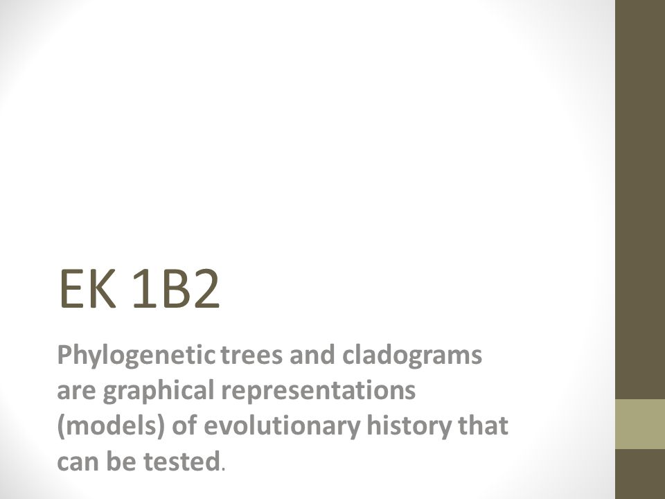 Difference between Phylogenetic Trees and Cladistics http://www.youtube.com/watch?v=fQwI90bkJl4
