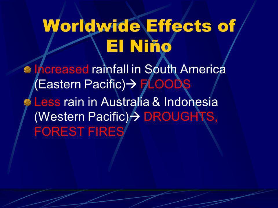 Worldwide Effects of El Niño Increased rainfall in South America (Eastern Pacific)  FLOODS Less rain in Australia & Indonesia (Western Pacific)  DRO
