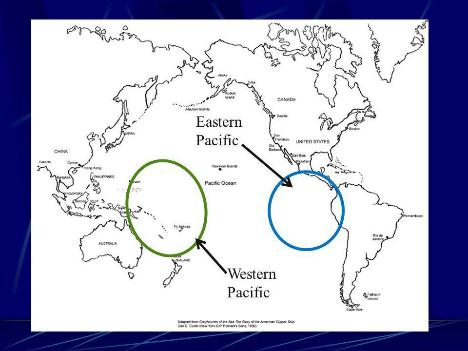 Normal Conditions Winds & currents move from East to west at the equator Warmer water accumulates in the western pacific