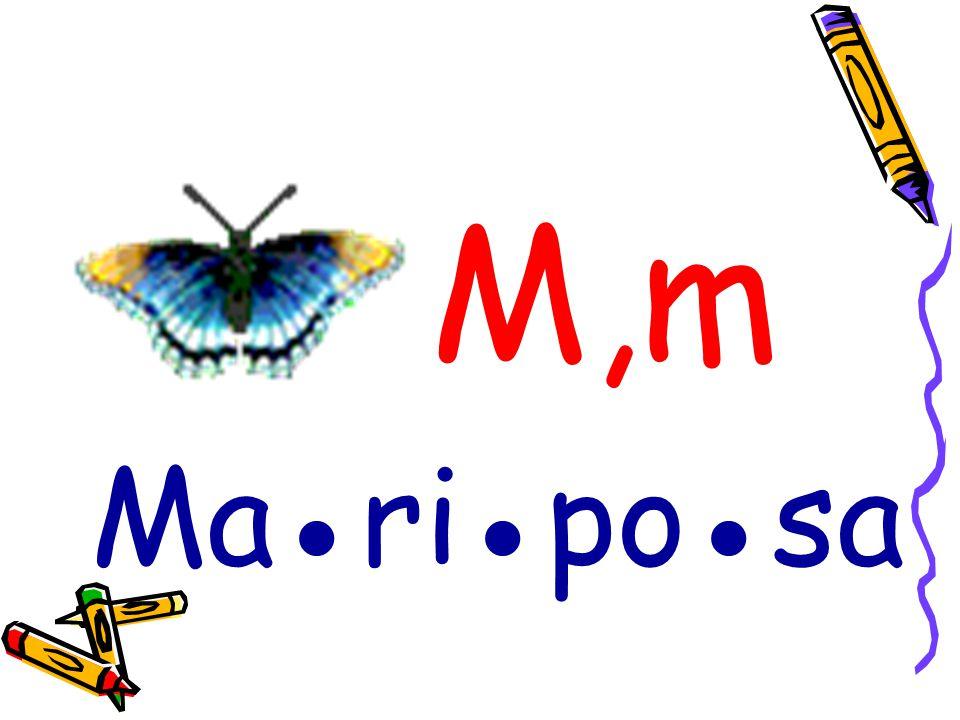 M,m Ma●ri●po●sa