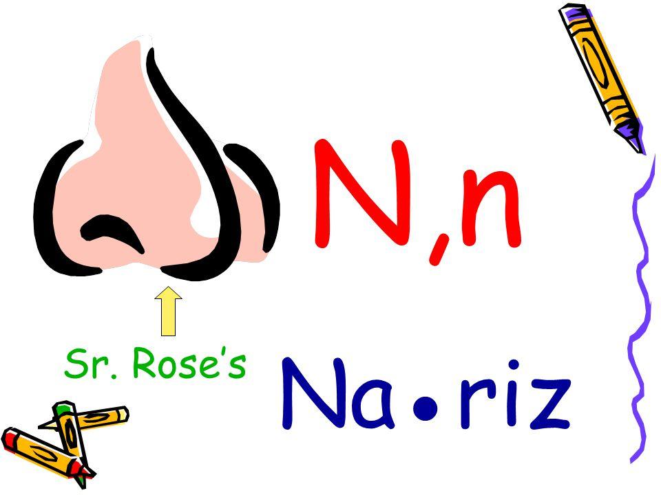N,n Na●riz Sr. Rose's