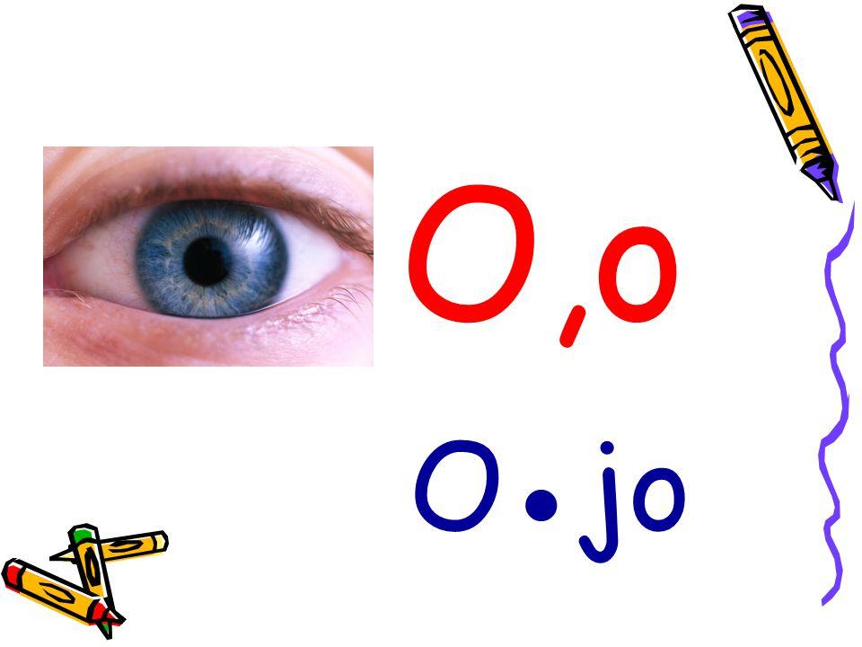 O,o O●jo