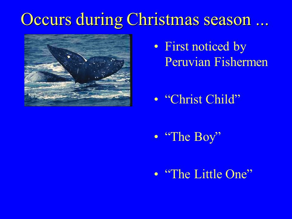 Occurs during Christmas season...