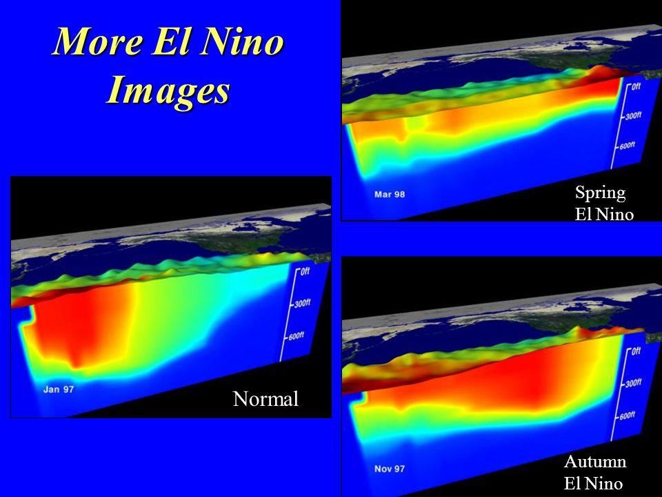 More El Nino Images Normal Autumn El Nino Spring El Nino