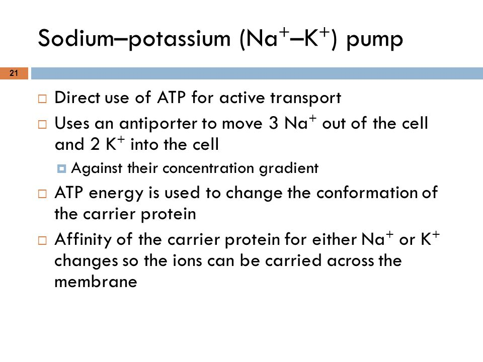 Sodium–potassium (Na + –K + ) pump 21  Direct use of ATP for active transport  Uses an antiporter to move 3 Na + out of the cell and 2 K + into the