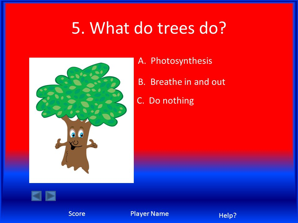5. What do trees do A. Photosynthesis C. Do nothing B. Breathe in and out ScorePlayer Name Help