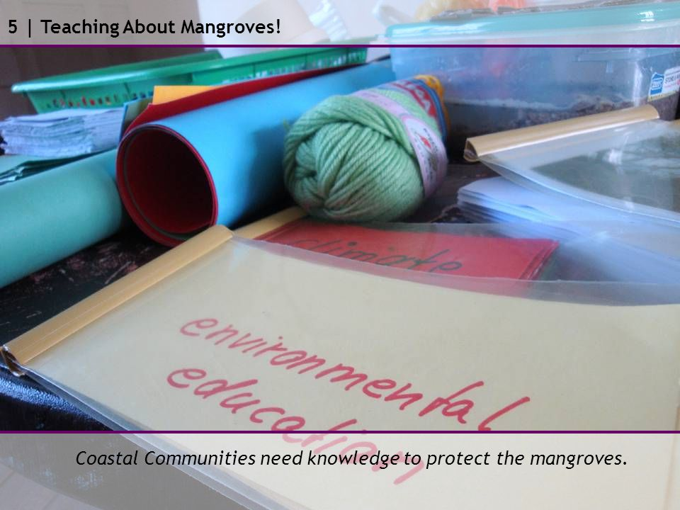 5 | Teaching About Mangroves! Coastal Communities need knowledge to protect the mangroves.