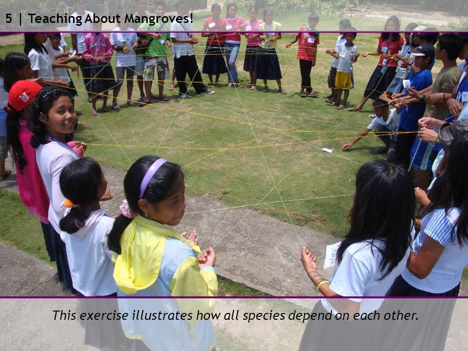 This exercise illustrates how all species depend on each other. 5 | Teaching About Mangroves!