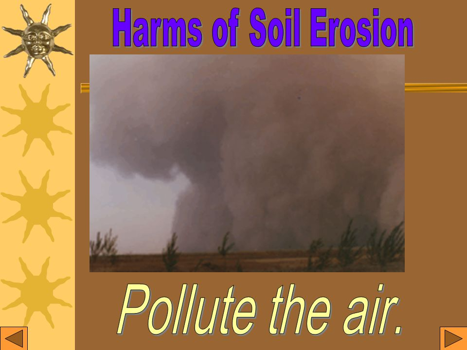 Terrible sand- dust storms are caused by soil erosion.