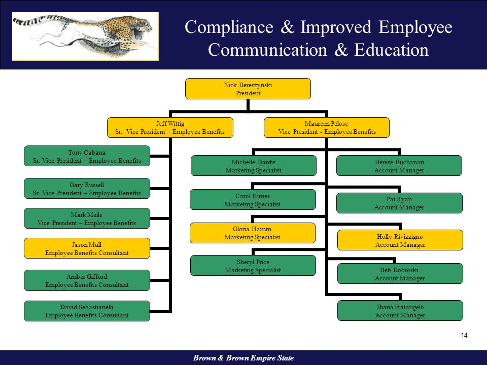 14 Brown & Brown Empire State Your Employee Benefits Team David Sebastianelli Employee Benefits Consultant Compliance & Improved Employee Communicatio