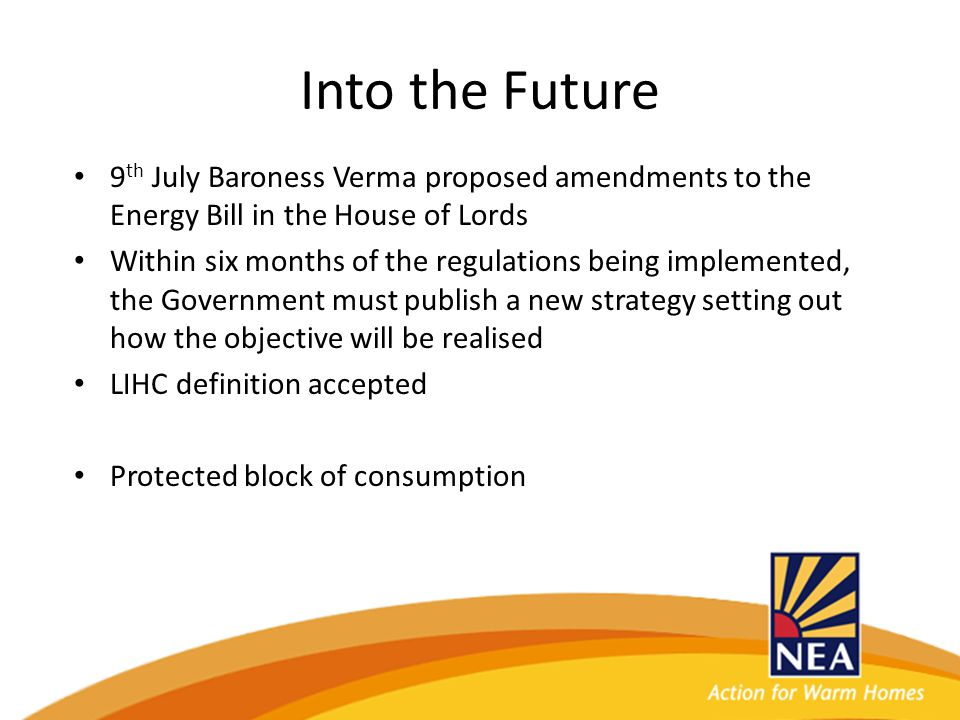 Into the Future 9 th July Baroness Verma proposed amendments to the Energy Bill in the House of Lords Within six months of the regulations being implemented, the Government must publish a new strategy setting out how the objective will be realised LIHC definition accepted Protected block of consumption