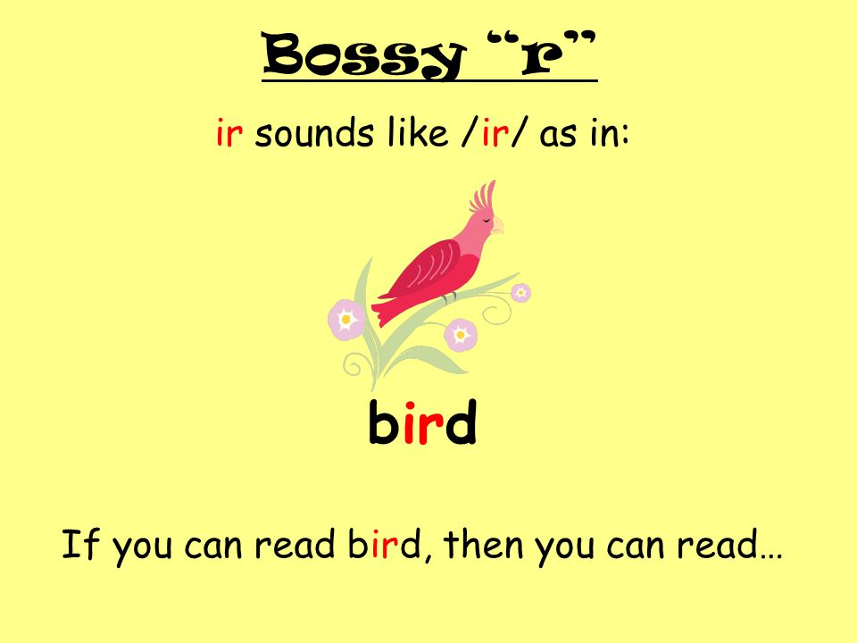 """Bossy """"r"""" ir sounds like /ir/ as in: bird If you can read bird, then you can read…"""