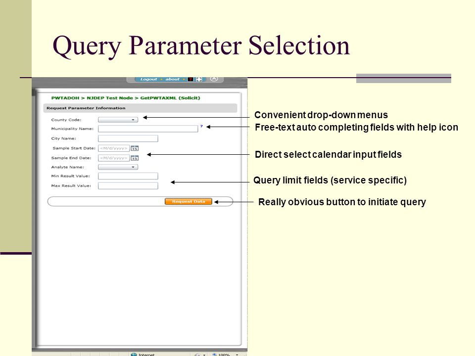 Query Parameter Selection Convenient drop-down menus Free-text auto completing fields with help icon Direct select calendar input fields Query limit fields (service specific) Really obvious button to initiate query