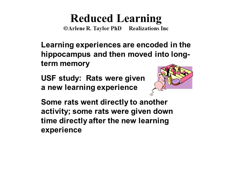 Reduced Learning  Arlene R. Taylor PhD Realizations Inc Learning experiences are encoded in the hippocampus and then moved into long- term memory USF