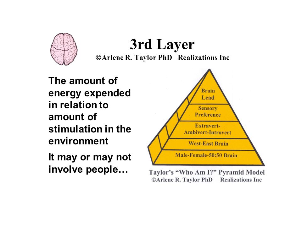 The amount of energy expended in relation to amount of stimulation in the environment It may or may not involve people… 3rd Layer  Arlene R. Taylor P