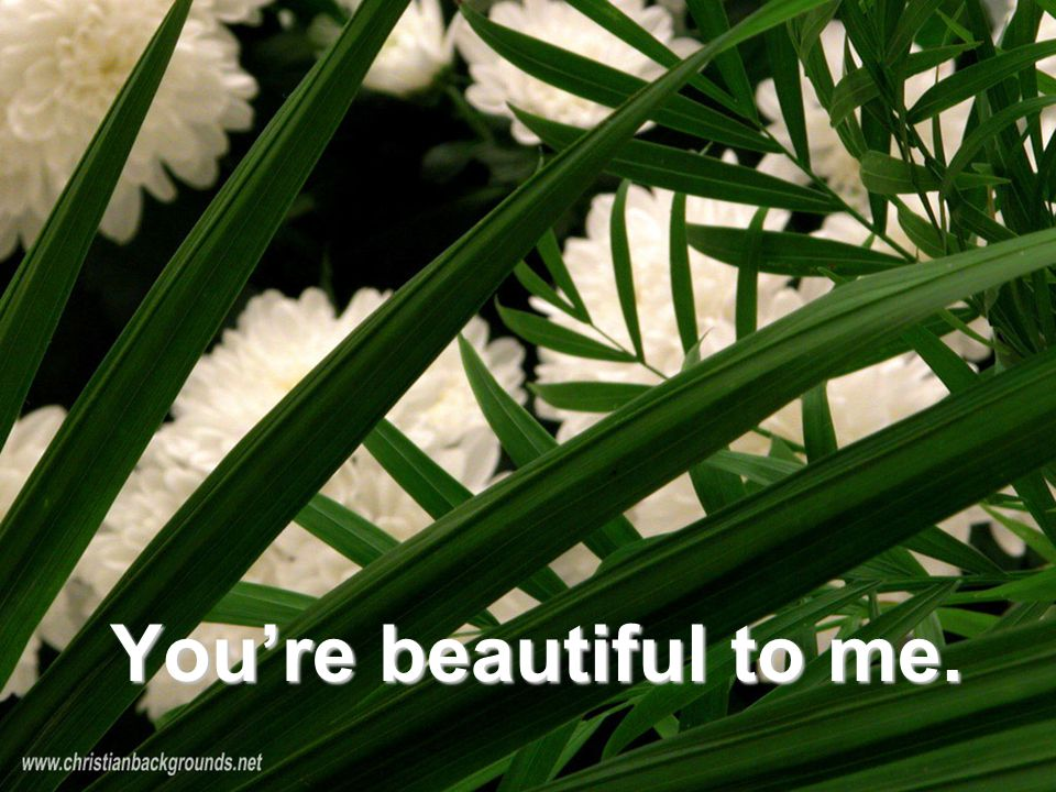 You're beautiful to me.
