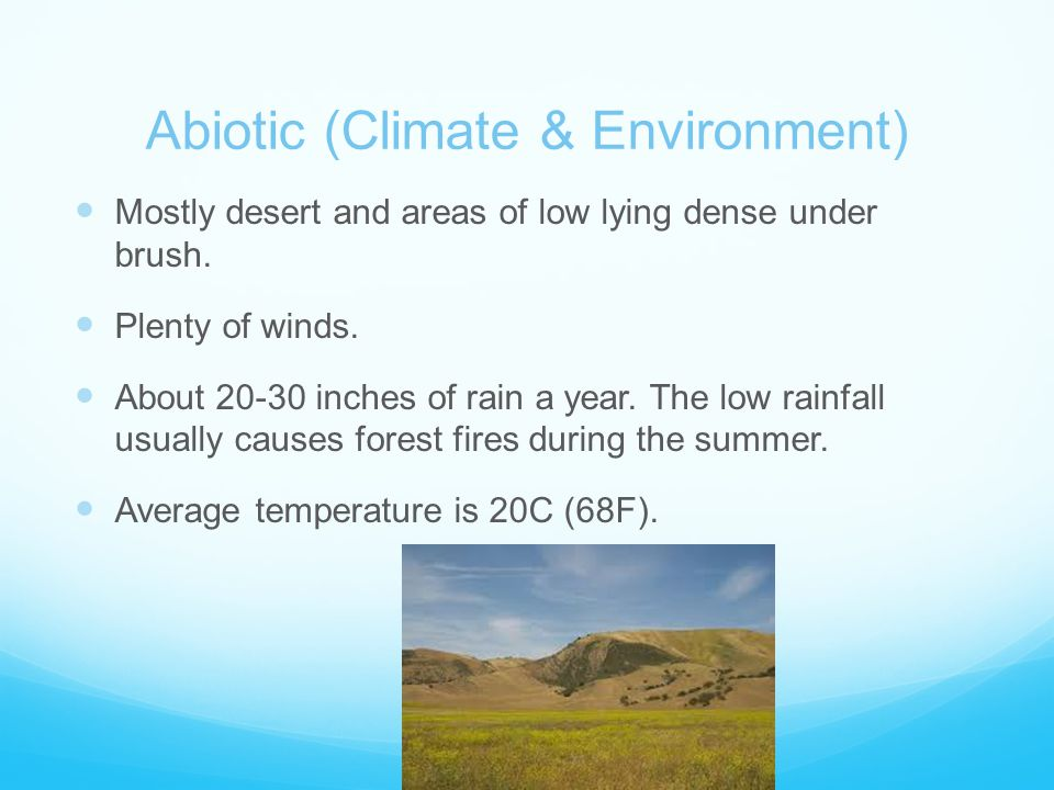 Abiotic (Climate & Environment) Mostly desert and areas of low lying dense under brush.