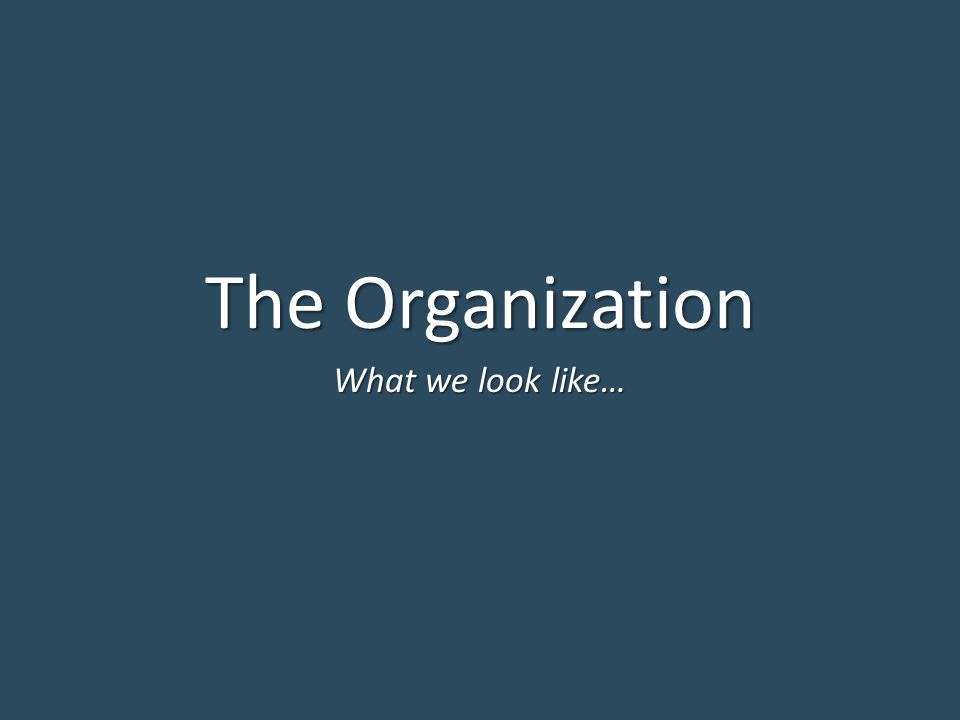 The Organization What we look like…