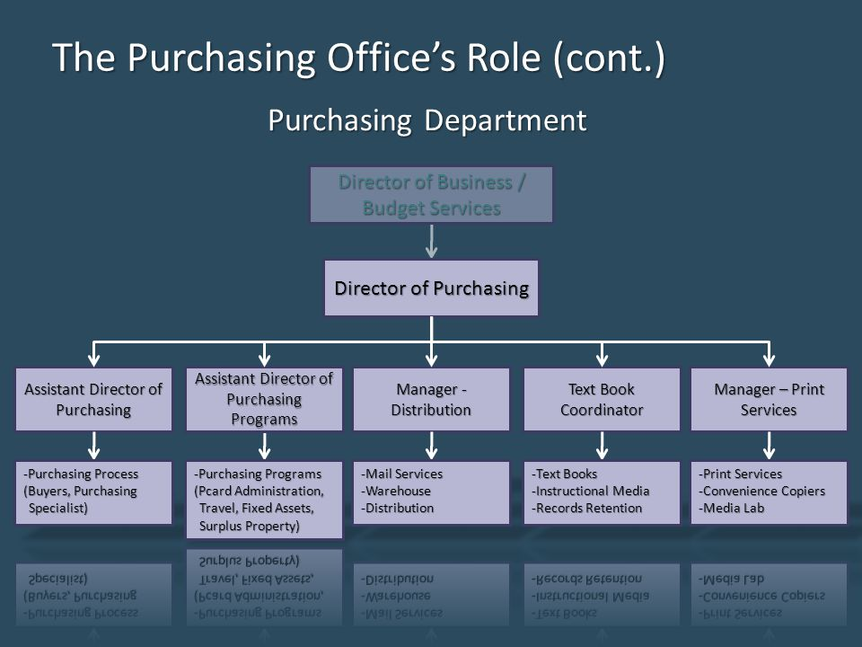 The Purchasing Office's Role (cont.) Purchasing Department Director of Business / Budget Services