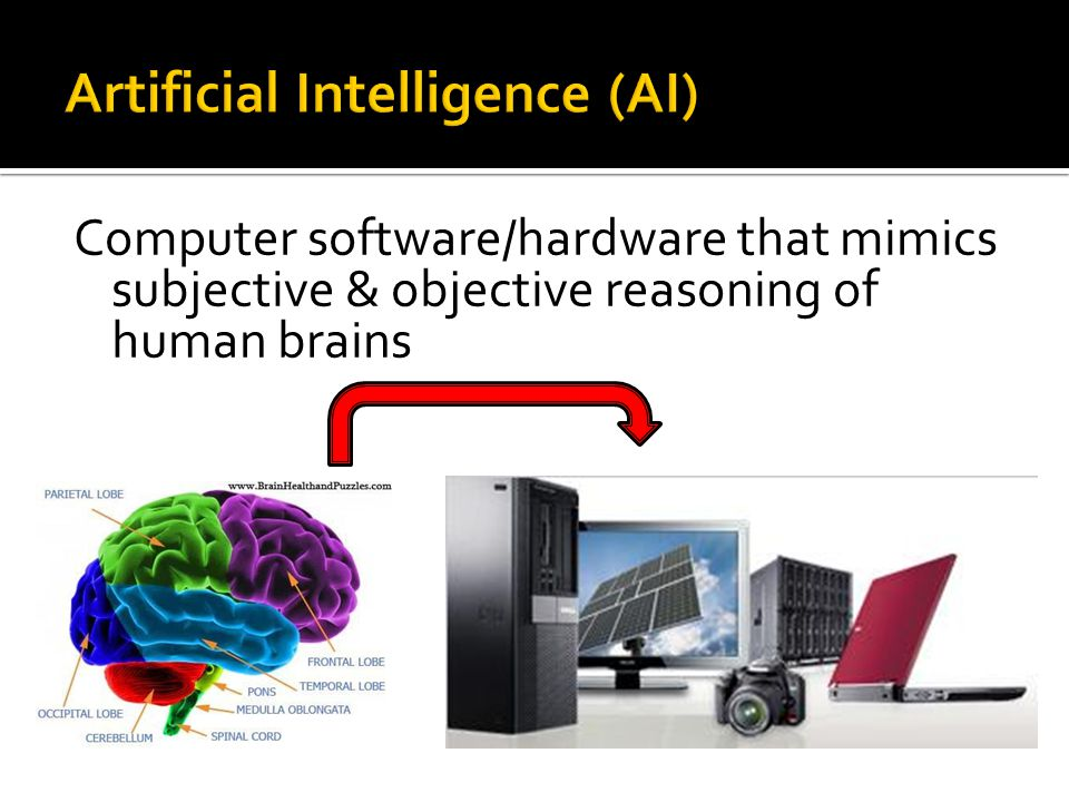 Computer software/hardware that mimics subjective & objective reasoning of human brains