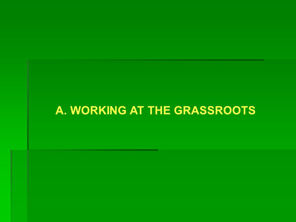 A. WORKING AT THE GRASSROOTS