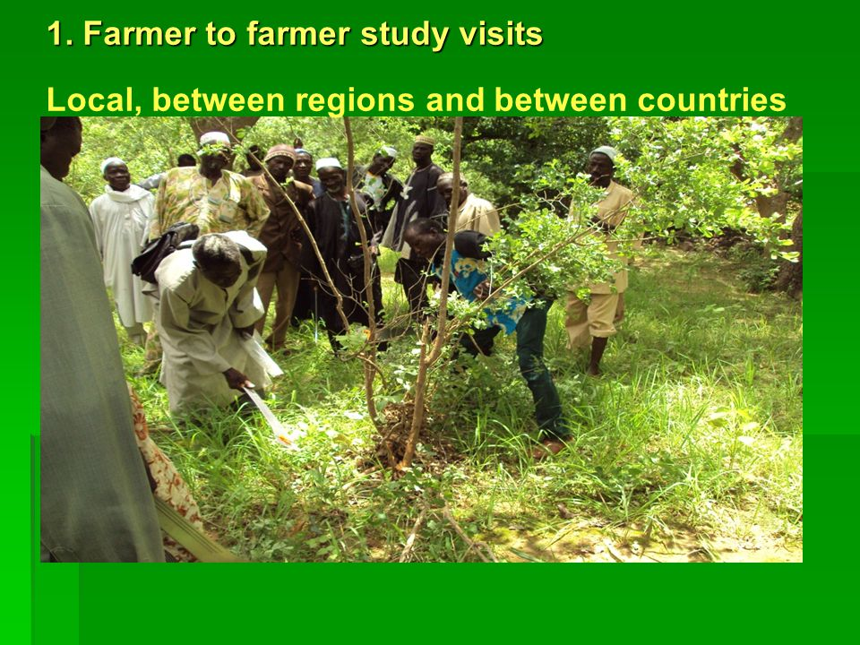 1. Farmer to farmer study visits Local, between regions and between countries