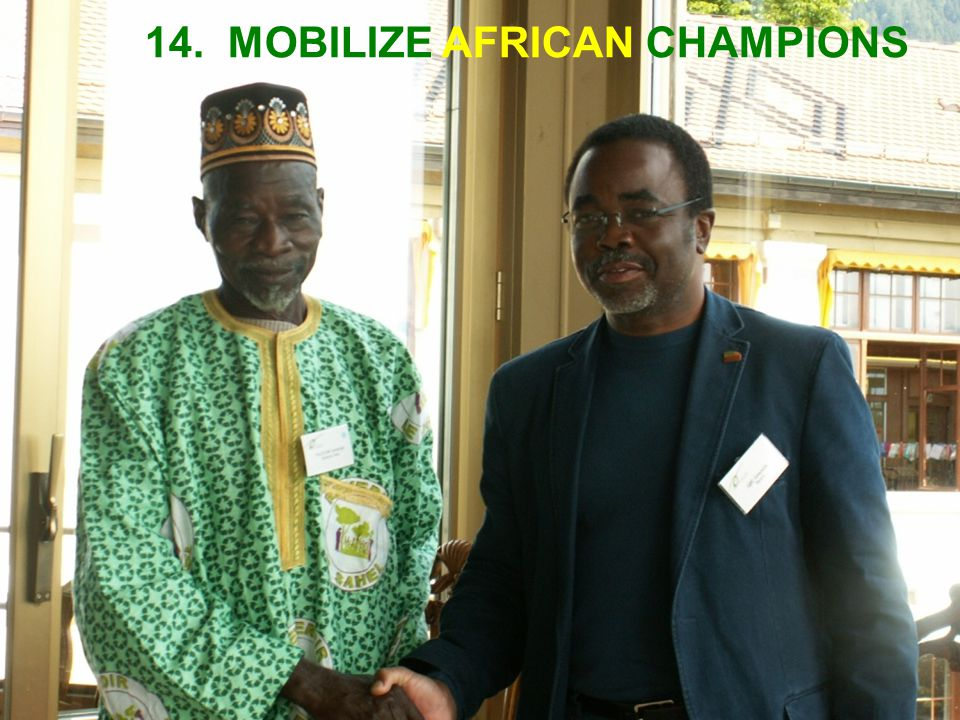 14. MOBILIZE AFRICAN CHAMPIONS