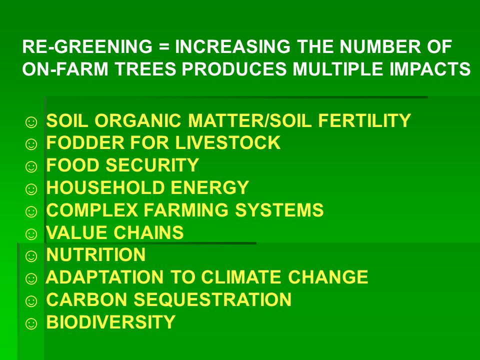 RE-GREENING = INCREASING THE NUMBER OF ON-FARM TREES PRODUCES MULTIPLE IMPACTS ☺ SOIL ORGANIC MATTER/SOIL FERTILITY ☺ FODDER FOR LIVESTOCK ☺ FOOD SECU