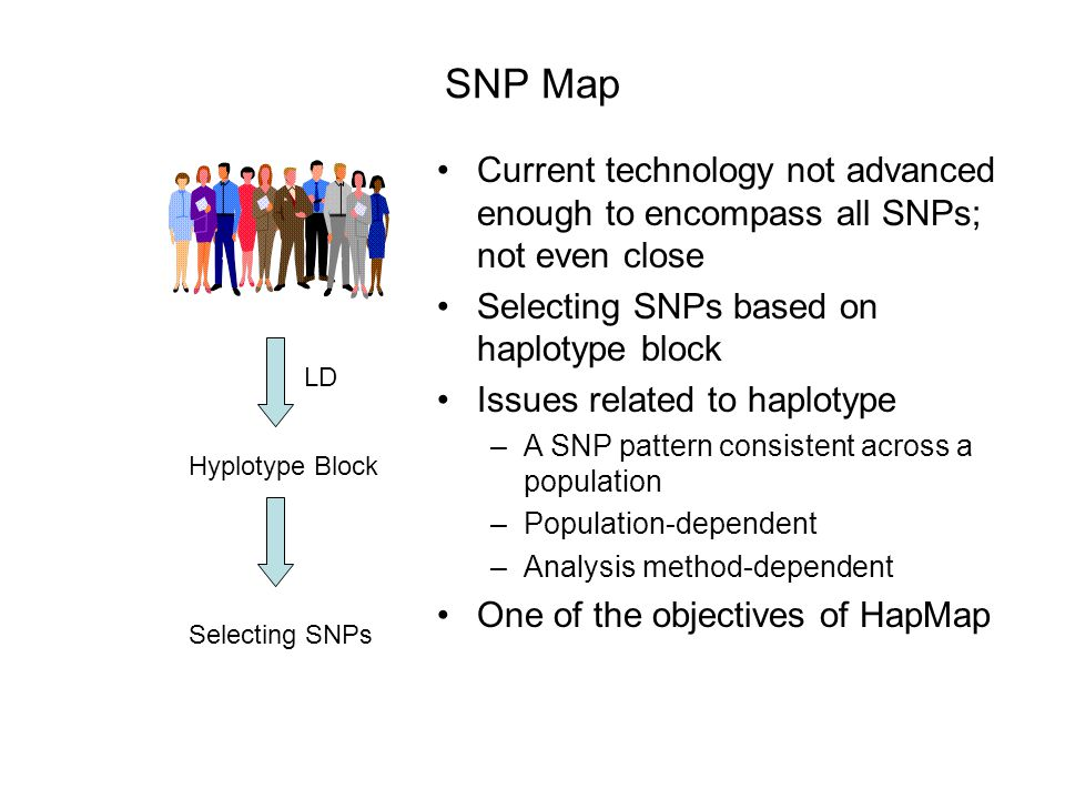 Selection of SNPs for GWAS