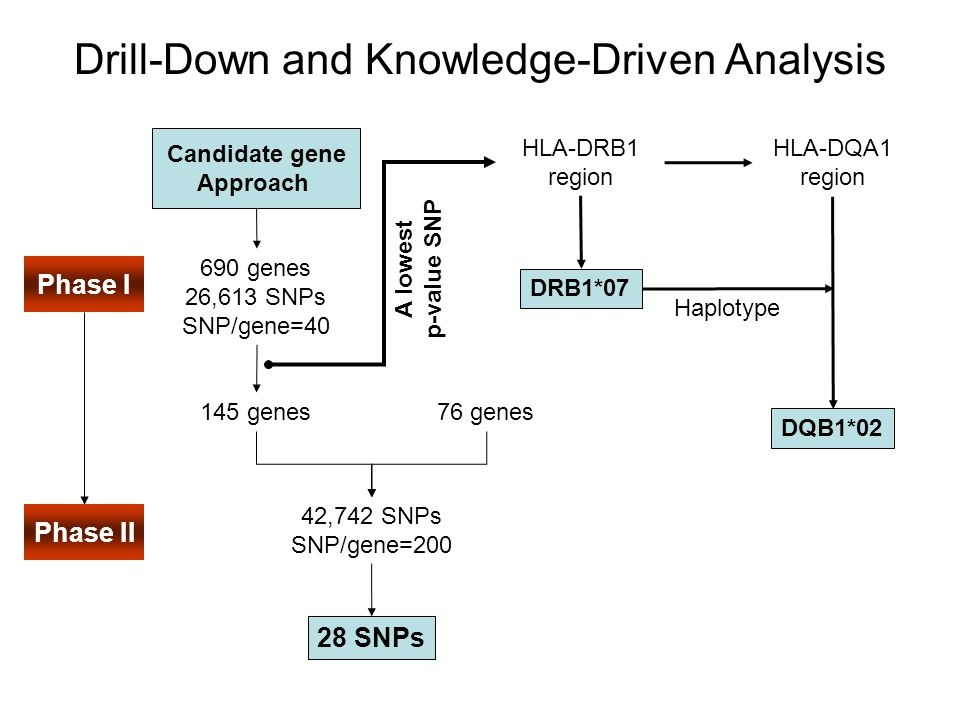 Validated by the Test Set Test set (replication study) –10 Cases and 16 Controls Both DRB1*07 and DQB1*02 are significant Only 2 of 28 SNPs are significant, might be due to: –False positive in Phase I –Lack of power A note: –Phases I and II genotyping using the Perlegen technology –Replication study using the TaqMan assay