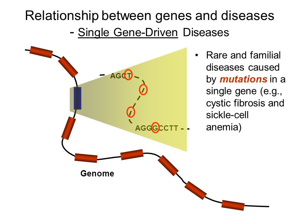 Identify Genetic Profile Through Gene Discovery - Approaches and Technologies Family Linkage-Based Approach –Use the linkage principle to study families in which the disease occur frequently Identify disease-susceptibility genes in rare familial diseases –More successful for diseases caused by a single gene (e.g., Huntington's disease) –More successful for genes strongly increasing risk –Need a well documented family tree and disease history –Successful far less likely for some heritable diseases caused by interaction of many weak genes