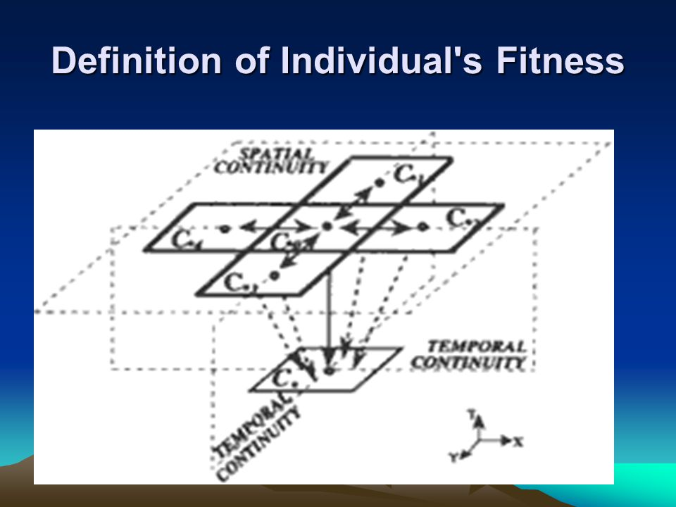 Definition of Individual s Fitness