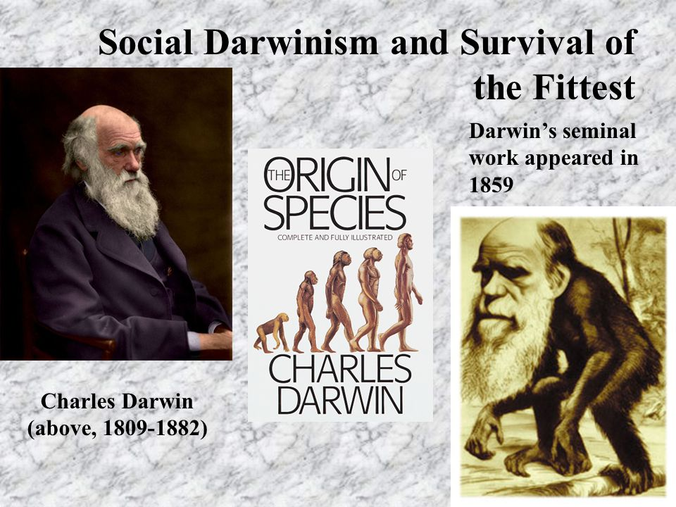 Social Darwinism and Survival of the Fittest Charles Darwin (above, 1809-1882) Darwin's seminal work appeared in 1859