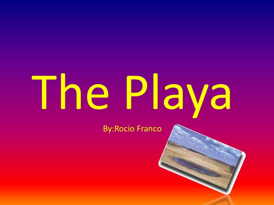 The Playa By:Rocio Franco