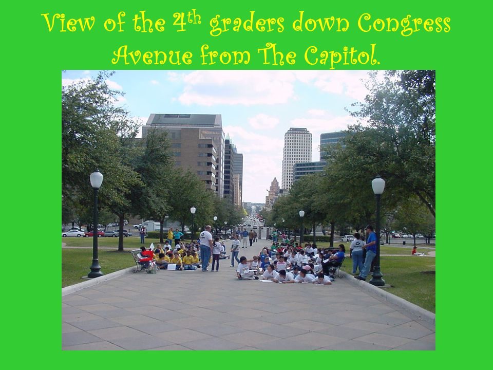 View of the 4 th graders down Congress Avenue from The Capitol.