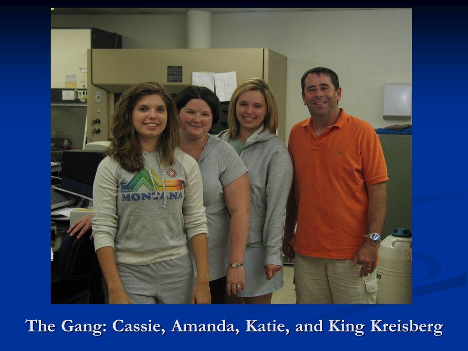 The Gang: Cassie, Amanda, Katie, and King Kreisberg