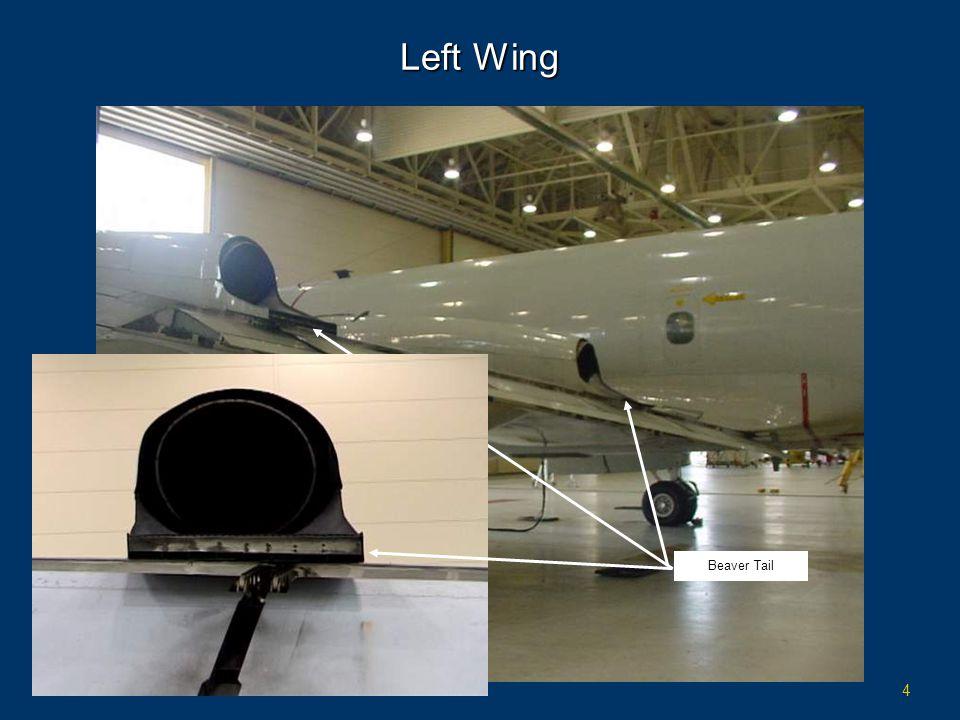 4 Left Wing Beaver Tail