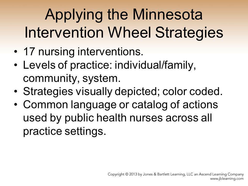 Applying the Minnesota Intervention Wheel Strategies 17 nursing interventions. Levels of practice: individual/family, community, system. Strategies vi