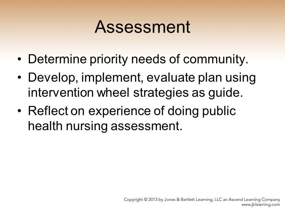 Assessment Determine priority needs of community. Develop, implement, evaluate plan using intervention wheel strategies as guide. Reflect on experienc