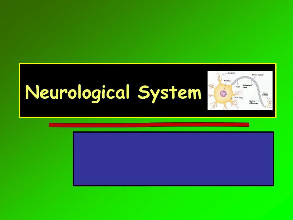 Symptom Overview HeadacheHeadache Dizziness and vertigoDizziness and vertigo ConfusionConfusion Memory/mental status changesMemory/mental status changes ParesthesiaParesthesia TremorsTremors