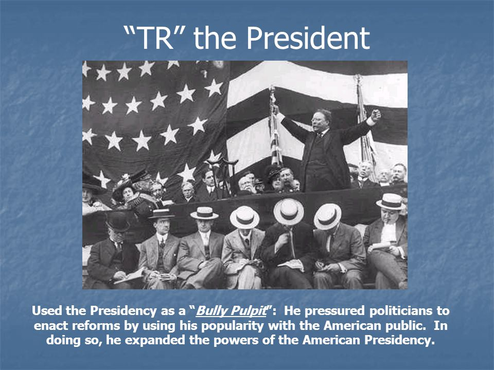TR the President Used the Presidency as a Bully Pulpit : He pressured politicians to enact reforms by using his popularity with the American public.