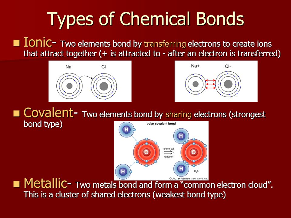 Types of Chemical Bonds Ionic- Two elements bond by transferring electrons to create ions that attract together (+ is attracted to - after an electron is transferred) Ionic- Two elements bond by transferring electrons to create ions that attract together (+ is attracted to - after an electron is transferred) Covalent- Two elements bond by sharing electrons (strongest bond type) Covalent- Two elements bond by sharing electrons (strongest bond type) Metallic- Two metals bond and form a common electron cloud .