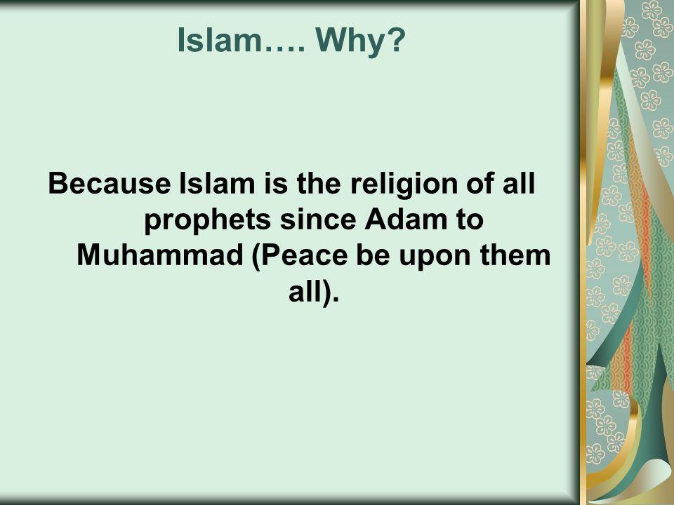 Islam…. Why.