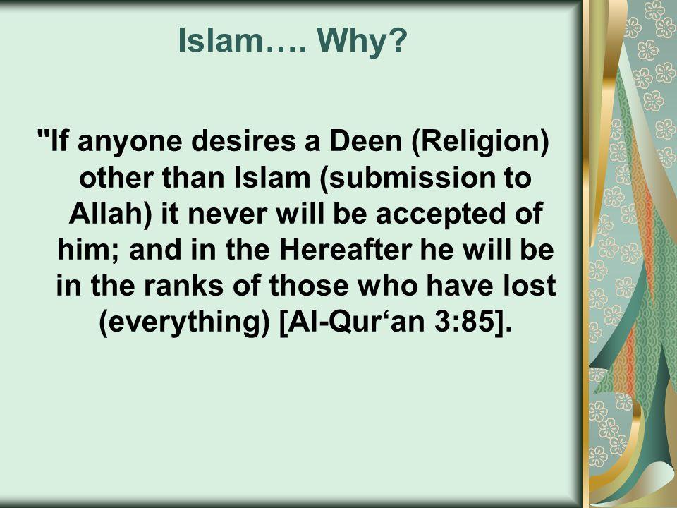 Islam…. Why?